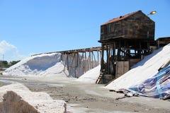 соль продукции традиционное Стоковые Изображения RF
