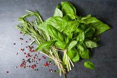 соль rosemary перца листьев трав чеснока cardamon залива spices ваниль базилик, розмариновое масло перца на черной предпосылке Стоковое фото RF