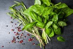 соль rosemary перца листьев трав чеснока cardamon залива spices ваниль базилик, розмариновое масло перца на черной предпосылке Стоковая Фотография