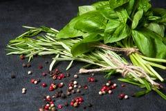 соль rosemary перца листьев трав чеснока cardamon залива spices ваниль базилик, розмариновое масло перца на черной предпосылке Стоковое Фото