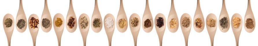 соль rosemary перца листьев трав чеснока cardamon залива spices ваниль Стоковые Изображения