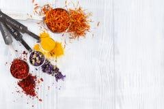 соль rosemary перца листьев трав чеснока cardamon залива spices ваниль Стоковые Фото