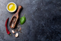 соль rosemary перца листьев трав чеснока cardamon залива spices ваниль Стоковая Фотография