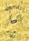 спайдер иллюстрации сидра Стоковая Фотография RF