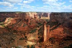 спайдер каньона cheley de утеса стоковое фото rf
