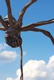 спайдер скульптуры облаков Стоковое Фото