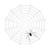 спайдер иллюстрация вектора