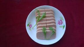 Спам (мясо завтрака) Стоковые Фото