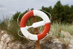 Спасательный пояс на деревянной доске стоковое фото rf