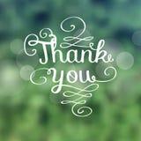 Спасибо сообщение сделанное растущих ветвей Стоковое Фото