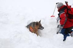 Спаситель от спасательной службы горы на болгарском Красном Кресте Стоковые Изображения