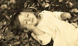 спать красотки Стоковое фото RF