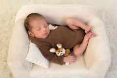 Спать младенец с кроликом игрушки стоковые изображения rf