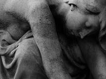 спать носа s макроса изображения фокуса собаки dof красотки отмелый Стоковое Фото