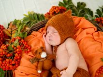 Спать newborn младенец в корзине Стоковое фото RF