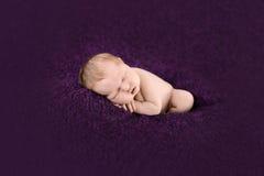 Спать newborn ребёнок на фиолетовой предпосылке Стоковые Фотографии RF