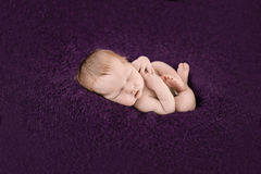 Спать newborn ребёнок на фиолетовой предпосылке Стоковые Изображения RF