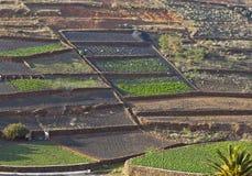 Спаханные поля в сельской холмистой области в Лансароте Стоковая Фотография