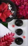 спа красотки стоковое изображение rf