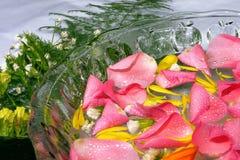спа лепестков розовая Стоковая Фотография RF