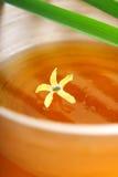 спа меда Стоковые Изображения RF