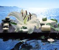 спа моря Стоковое Фото