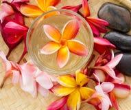 спа орхидеи принципиальной схемы облицовывает Дзэн обработки Стоковые Фотографии RF