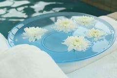 Спа цветка хризантемы Стоковые Изображения
