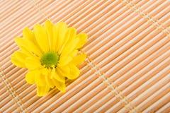 спа цветка Стоковые Фотографии RF