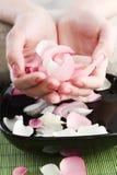 спа manicure Стоковое Изображение