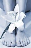 спа pedicure принципиальной схемы Стоковая Фотография RF