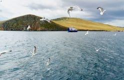 Сперма Batagayev парома между материком и островом Olkhon озеро Россия baikal Стоковые Изображения