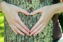 специалист по охране окружающей среды идет зеленый цвет Стоковое Изображение