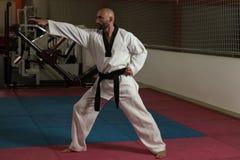 Специалист бойца Тхэквондо с позицией боя Стоковое фото RF