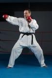 Специалист бойца Тхэквондо с позицией боя Стоковая Фотография