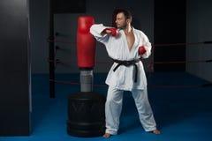 Специалист бойца Тхэквондо с позицией боя Стоковое Изображение RF