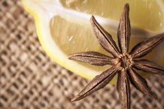 Специи анисовки лимона и звезды для горячих пить Стоковые Изображения RF