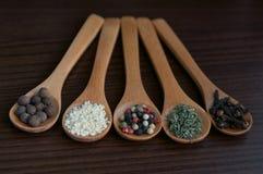Специи в деревянных ложках Стоковая Фотография