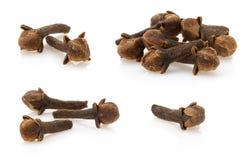 Специи гвоздичного дерева Стоковая Фотография RF