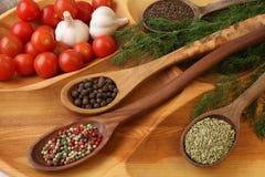 Специи и овощи Стоковые Изображения