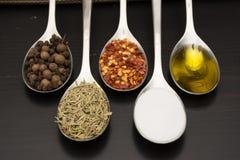 Специи и травы Ингридиенты еды и кухни Стоковое Изображение RF