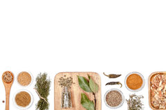 Специи и травы на белой предпосылке Взгляд сверху Стоковое Изображение RF