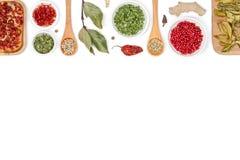 Специи и травы на белой предпосылке Взгляд сверху Стоковое Изображение