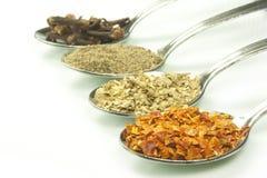 Специи и flavorings Стоковые Изображения