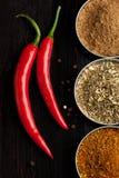 специи красного цвета горячих перцев chili Стоковые Фотографии RF