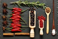специи красного цвета горячих перцев chili Стоковые Изображения