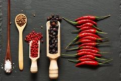 специи красного цвета горячих перцев chili Стоковая Фотография RF