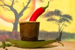 специи красного цвета горячих перцев chili Стоковая Фотография