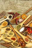 Специи на деревянных ложках Продажи экзотических специй Еда приправой ароматичные специи Стоковое Фото