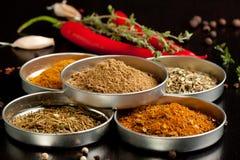 специи перцев chili установленные Стоковые Изображения